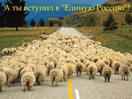 Картинки по запросу карикатура на партию единая россия
