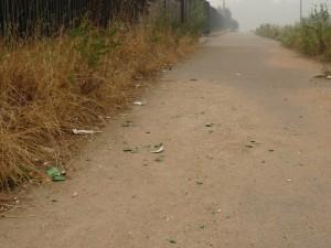 мусор в Зеленограде